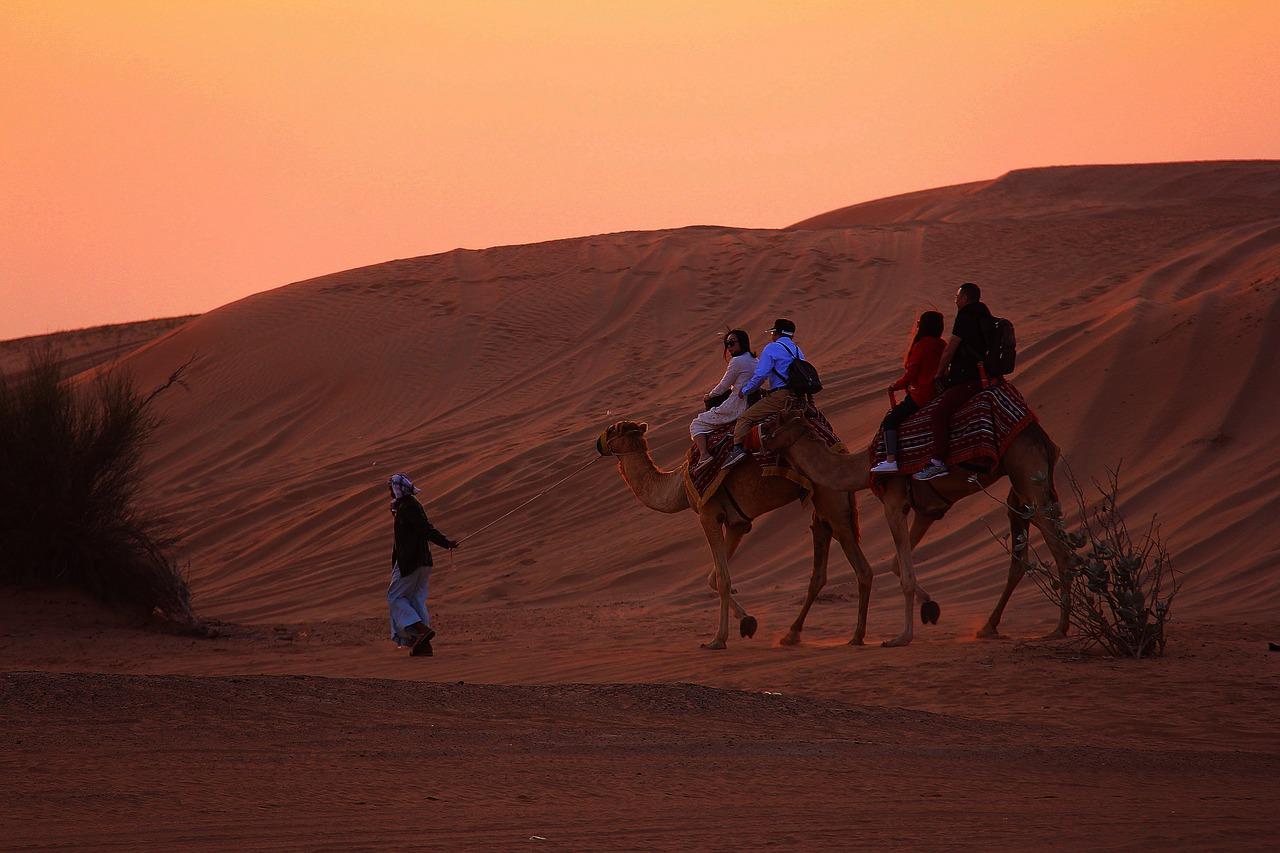Les safaris dans le désert